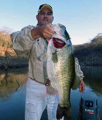 Ron Speed Jr with a grande hog bass that sucked down a Pop'R up against the bank of a small back end point