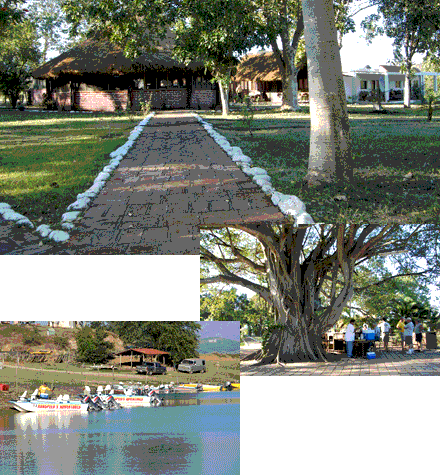 Nice clean cabins, quality boats and the outdoor bar under the giant Tule tree at Mexico's Club El Salto await trophy bass anglers.