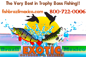 The Very Best in Trophy Peacock Bass in Brazil and Trophy Bass Fishing in Mexico!